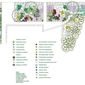 detail beplantingsplan